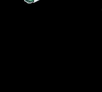 Габаритные размеры раздвоителя BSG.175